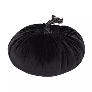 2/$15 - *NEW* Black Velvet Pumpkin